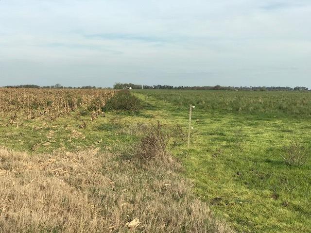 campo venta bavio magdalena 120 hectareas agricola ganadero