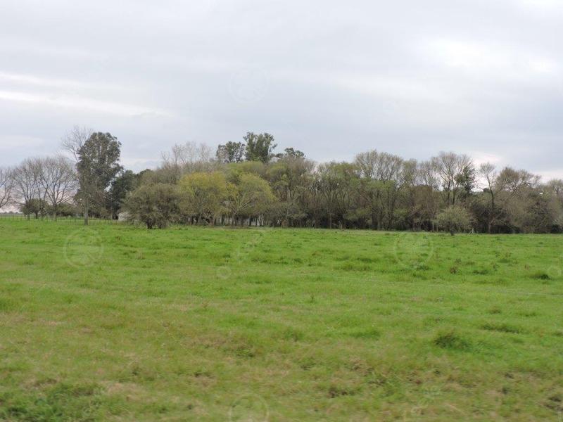 campo venta campo