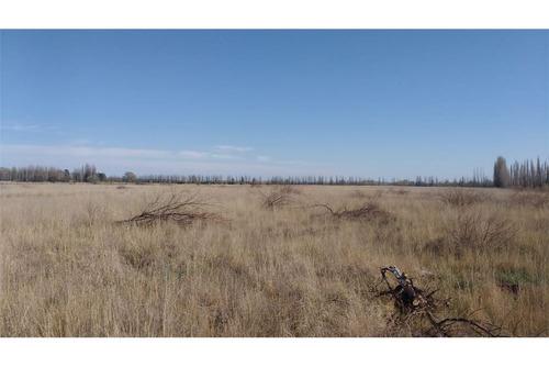 campo venta - pomona - valle medio