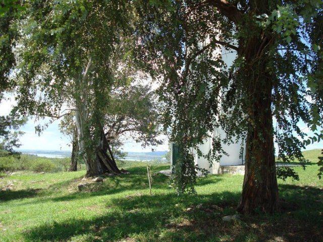 campo - villa del dique, córdoba, argentina.