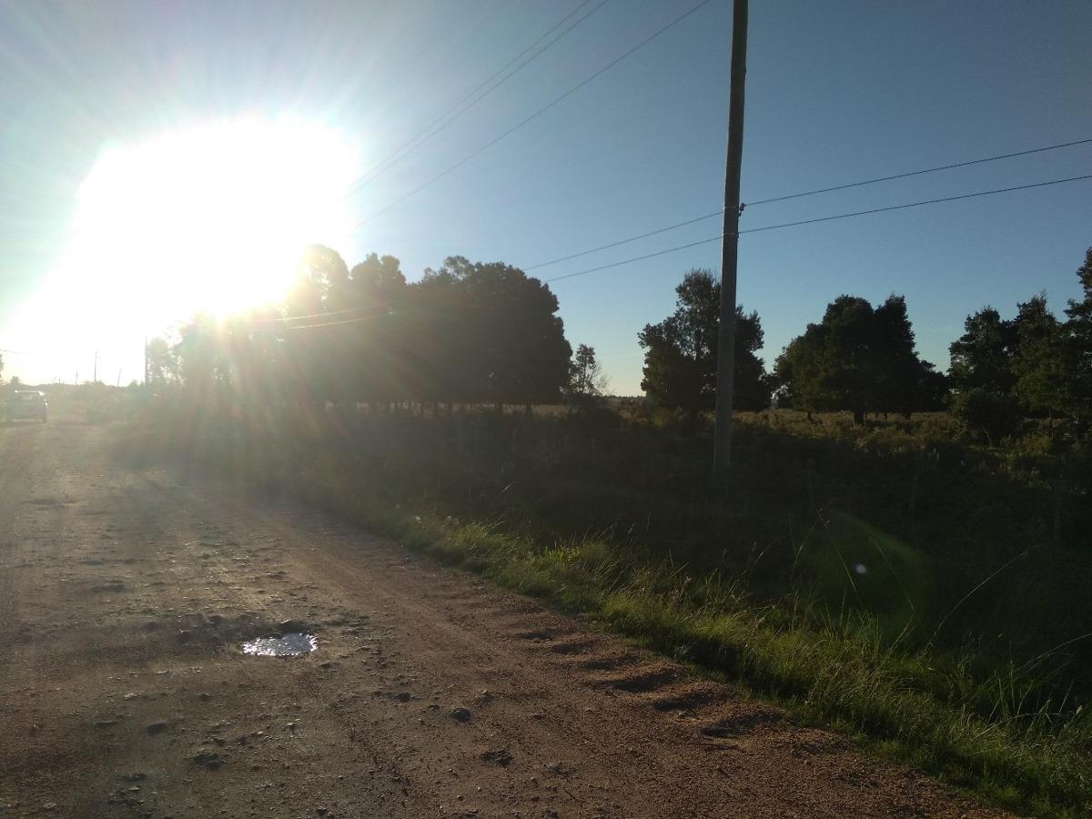 campo virgen en san jacinto ruta 7 km 46 u$s40000 v155