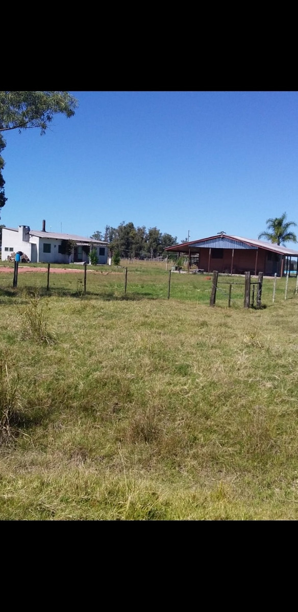 campo,2 casas,picina,electricidad,agua.