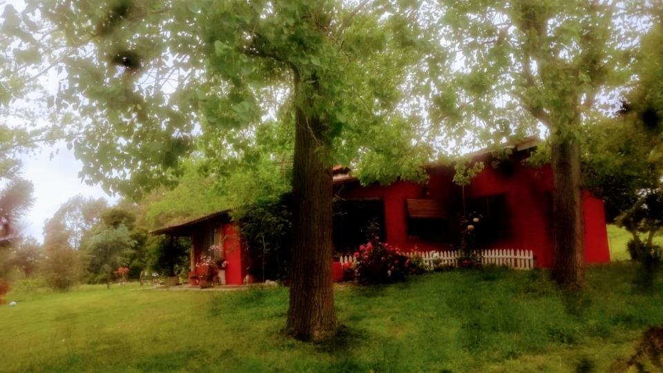 campo/casa quinta/chacracon 3 propiedades¡escuchamos ofertas