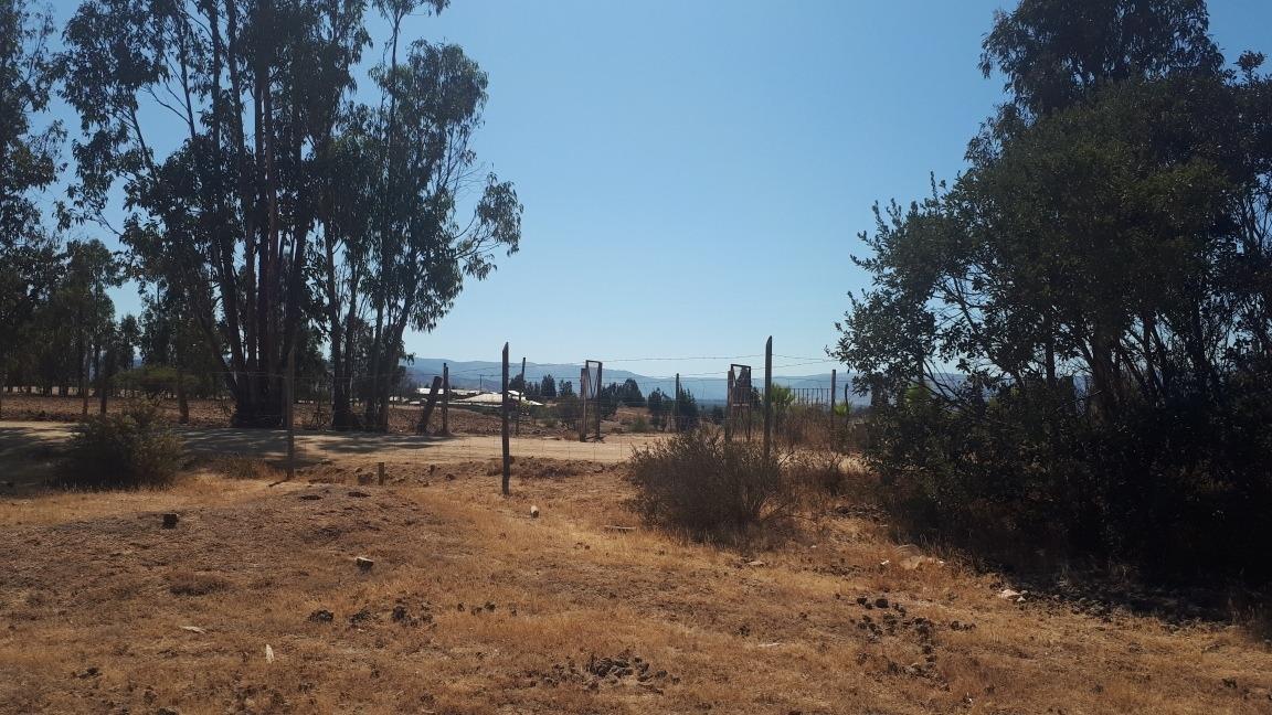 campos de lolol, 5000m2 rol propio