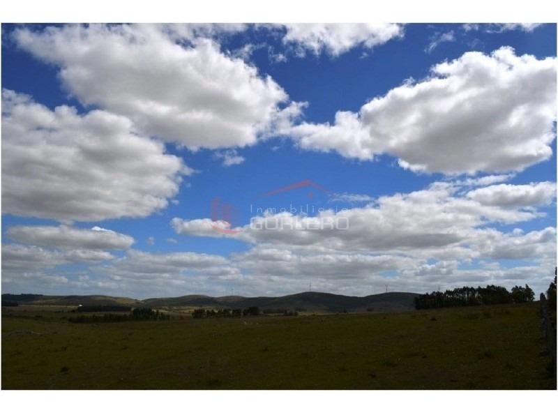campos en uruguay, chacra ruta 39- ref: 21453