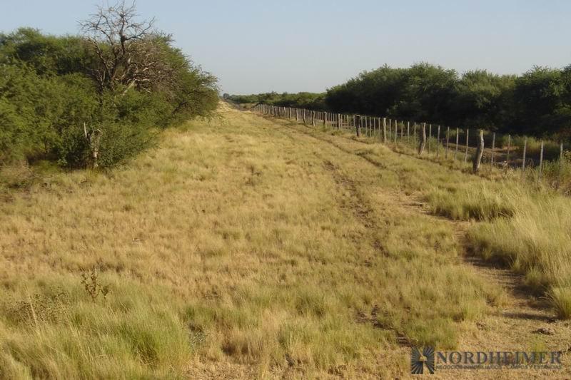 campos en venta -1.021 ha en parera, departamento rancul, la pampa -campo agr?cola-ganadero