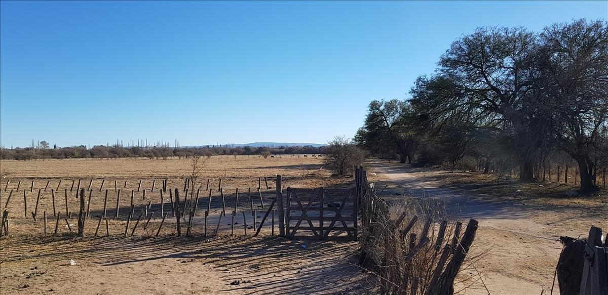 campos en villa sarmiento