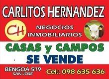 campos estancias chacras en venta en argentina - disponemos