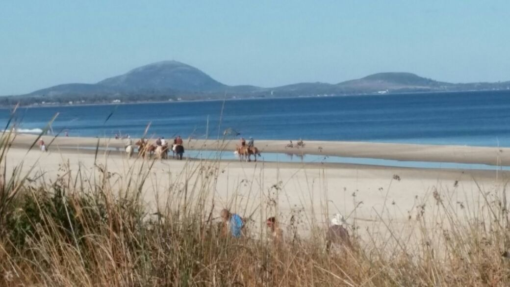 campos maritimo, 2 x 3ha en cuchilla alta, 2km de la playa