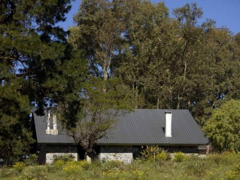 campos o chacras alquiler colonia del sacramento