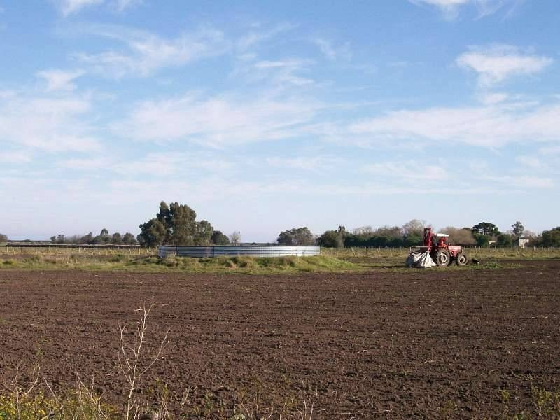 campos o chacras venta colonia