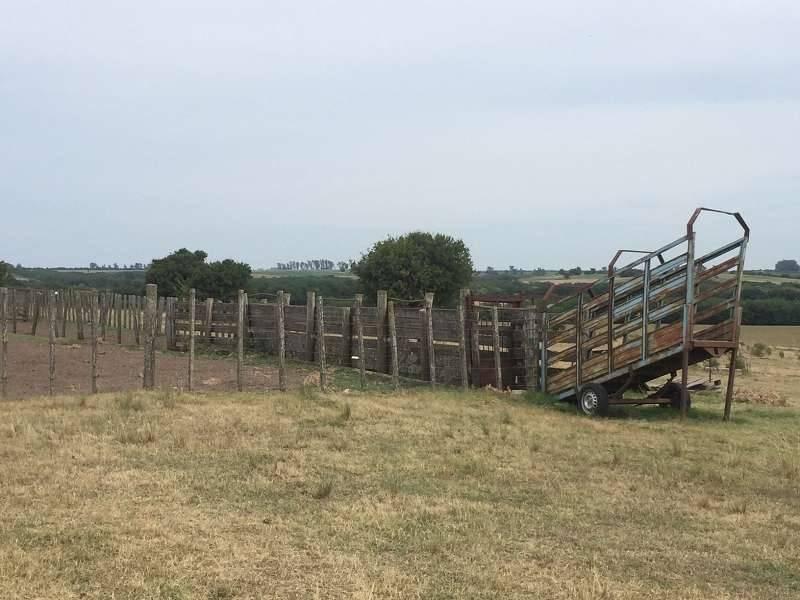 campos o chacras venta colonia del sacramento