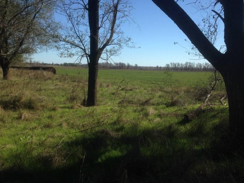 campos o chacras venta conhelo