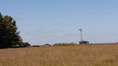 campos o chacras venta maipú