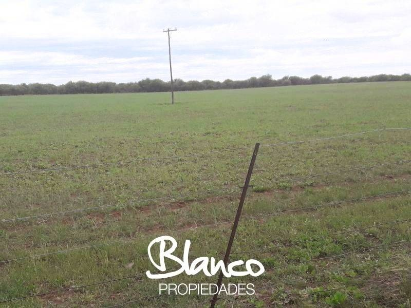 campos o chacras venta nueva galia