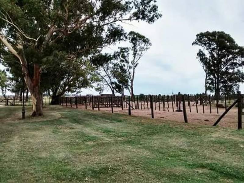 campos o chacras venta ranqueles