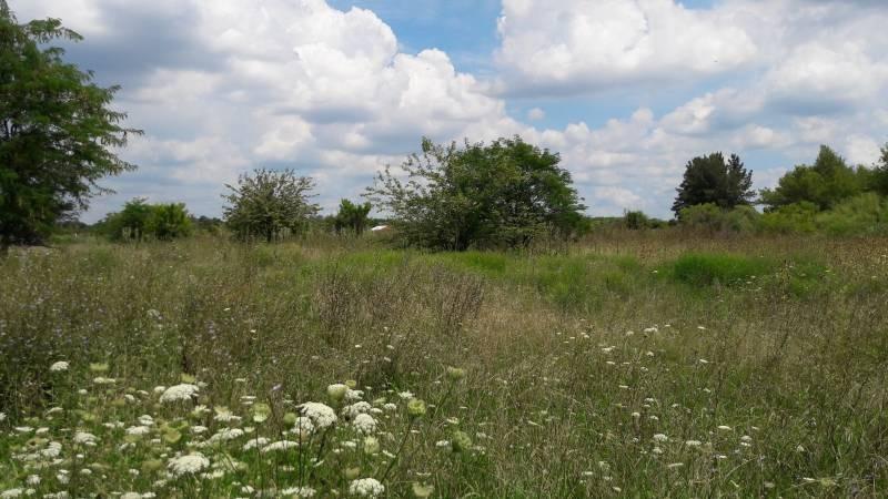 campos o chacras venta zelaya