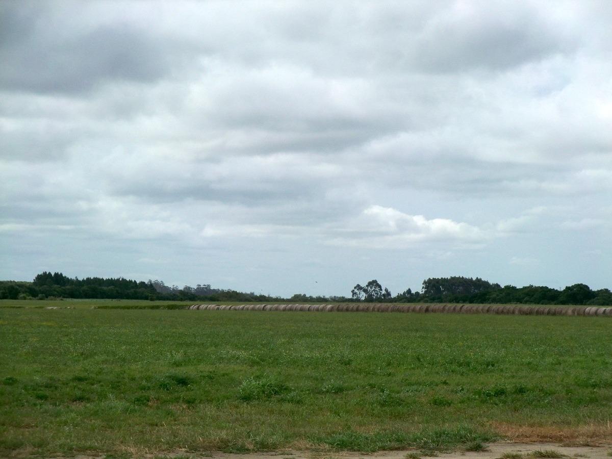 campos venta agrícola entre ecilda paullier y san josé