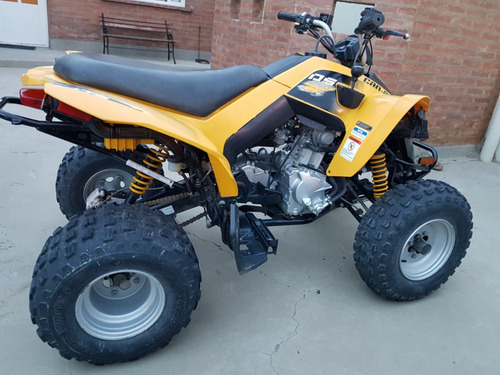 can am 250 ds