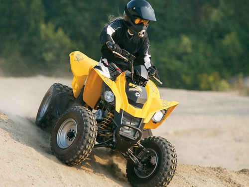 can am 250 ds efi