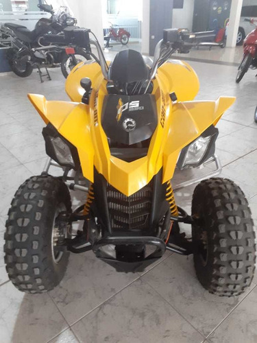 can-am ds 250 2011