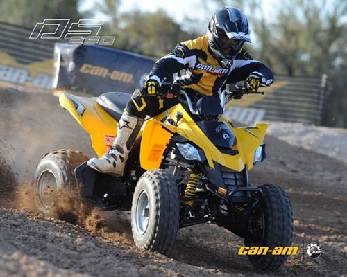 can am ds 250 concesionario oficial entrega inmediata