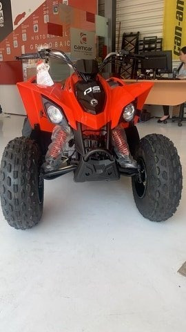can am ds 90 2020