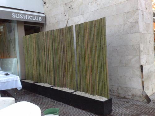 cañas bambu tacuara x metro lineal promo! fact a - b