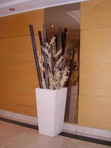 cañas de bambú tacuara x m2 + colocación incluída