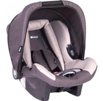 canasta auto para bebe