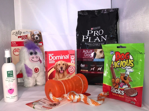 canasta navideña para perros adultos promoción 1