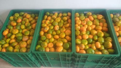canastas  de 20 kilos  de mandarina y naranja
