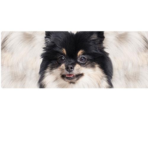 caneca cachorro spitz branco e preto landscape