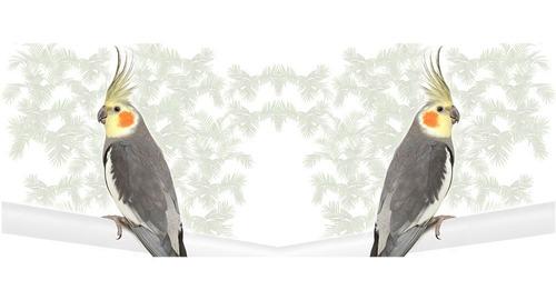caneca calopsita cinza mirror