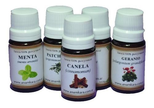 canela (cinnamomum verum) aceite esencial puro y natural