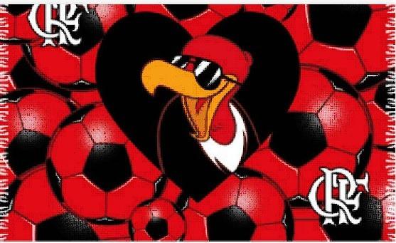 5c9400c16d8d Canga De Praia Flamengo Mascote - Oficial - R$ 45,00 em Mercado Livre