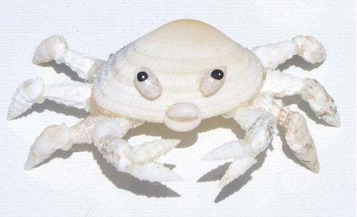 cangrejo hecho de las conchas naturales, desde bahamas