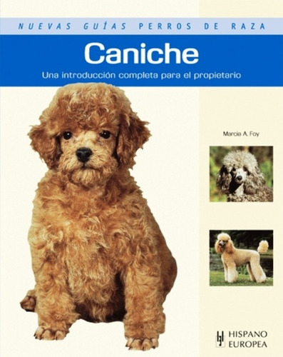 caniche - guías perros de raza, marcia foy, hispano europea