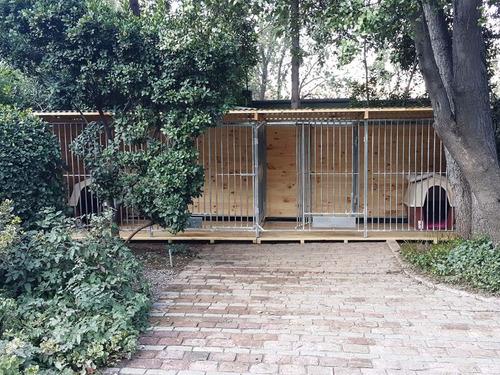 canil, casita, casa, perro, funcional y exclusivo diseño