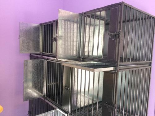 caniles jaulas de acero y fierro para 9 animales veterinaria