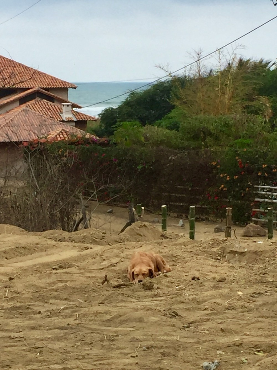 canoa 1,029 m2 beach land inside exclusive private