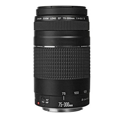 canon-eos-rebel-t6i-camera-w-18-55mm-lens-75-300mm-lens
