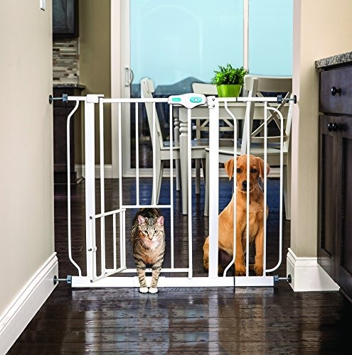 Carlson Extra Wide Pet Gate With Small Door Nuevo