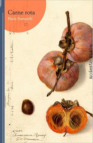carne rota - cuentos - flavia pantanelli