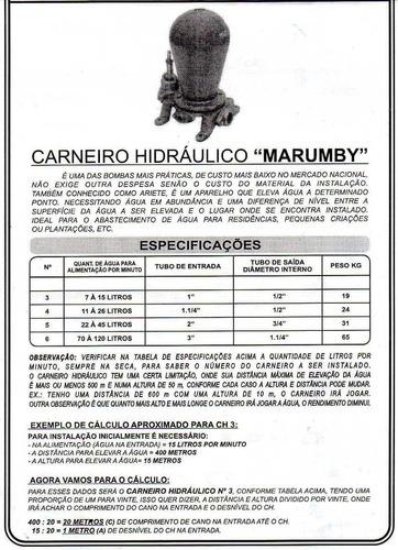 carneirio hidraulico n° 5, bomba de agua ecologica