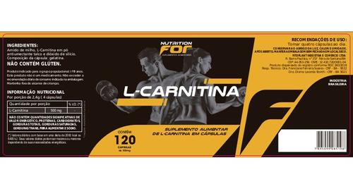 carnitina 500mg 120 cáps. kit 3 potes premiun pura original