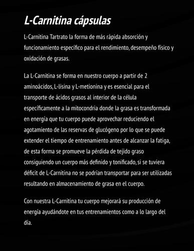 carnitina mdn l-carnitina 120 capsulas 240 mg c/u