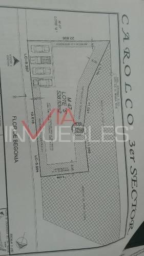 carolco 3° sector