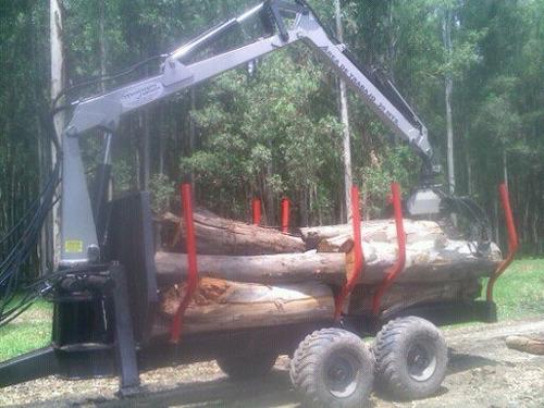 carro con grua forestal