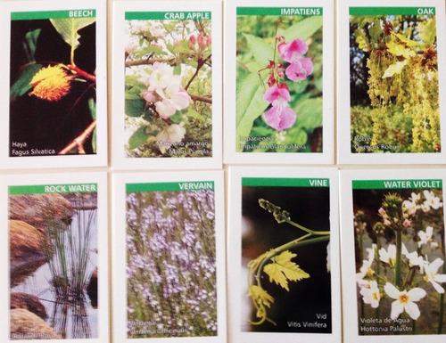 cartas florales flores de bach + mazo + folleto explicativo